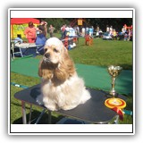 'XX-SHOW'. Antaleks Fifth Element (11 months) - J.ClubWiner, BIS-3.