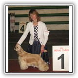 JCH RUS, J.ClubWiner Antaleks Fifth Element (1 years 8 months)